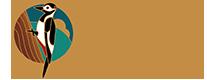 De Nunspeetse Logo